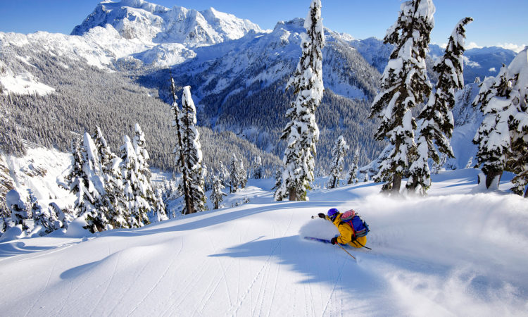 It's All In The Hips – Having Hip Mobility While you Ski Could Save Your Back